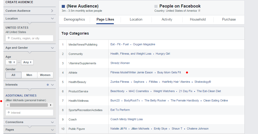 Enter the name of a big name person in the industry that you're ideal clients might follow. Look at the other pages that are similar or are liked by the same audience.